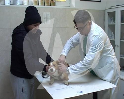 vakcinacija 1