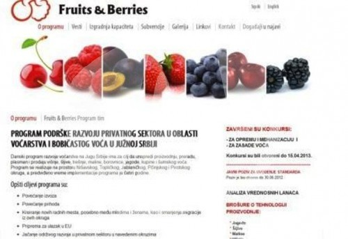fruits berries
